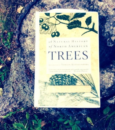 book cover photo Donald Culross Peattie: A Natural History of North American Trees